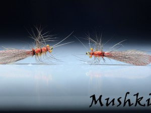 Stone fly realistic wing D-346