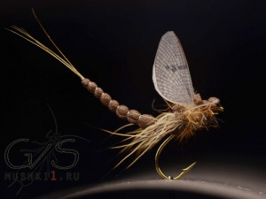 Mayfly realistic wing D-25