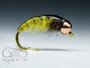 Caddis nymph (Olive) N-131