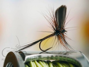 Mayfly classic D-22