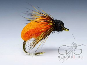Beetle foam (Orange) D-62