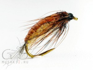 Caddis pupa (Brown) W-23