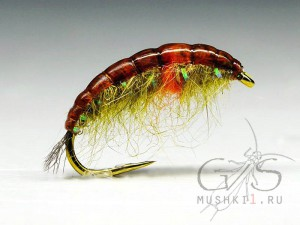 Rabbit Larva (Olive-Orange) N-57